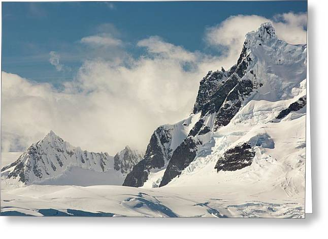 Mountains On The Antarctic Peninsular Greeting Card by Ashley Cooper