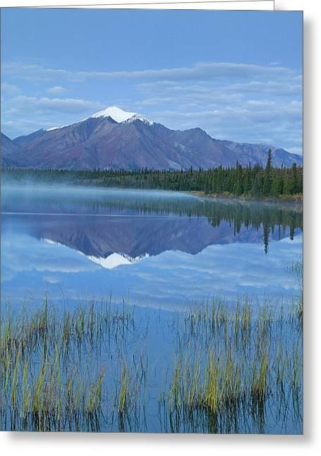 Beautiful Scenery Greeting Cards - Mountains Reflect In Drashner Lake Just Greeting Card by Kevin Smith