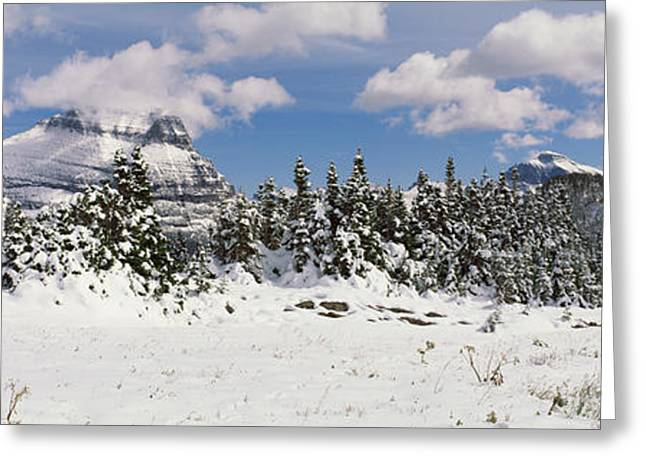 Fir Trees Photographs Greeting Cards - Mountains With Trees In Winter, Logan Greeting Card by Panoramic Images