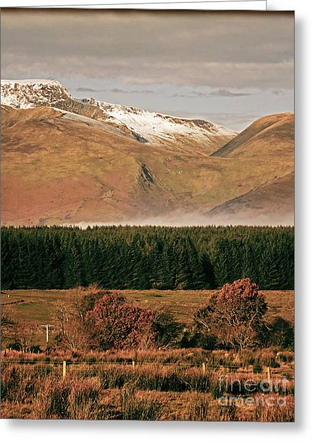 Wainwright Greeting Cards - Mountainscape Blencathra Greeting Card by Linsey Williams