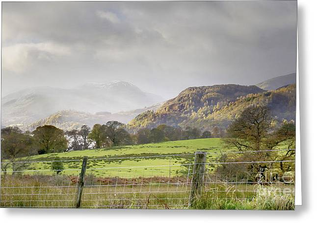 Wainwright Greeting Cards - Mountainscape-towards Lake Ullswater Greeting Card by Linsey Williams