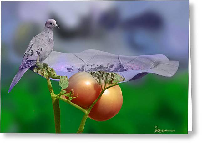 Tn Mixed Media Greeting Cards - Mourning Dove Greeting Card by EricaMaxine  Price