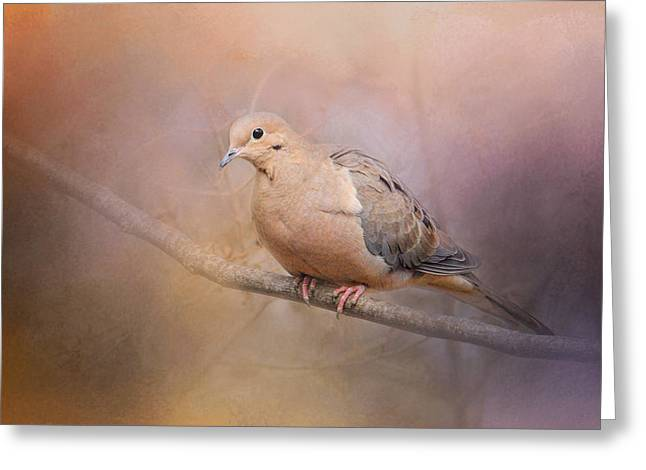 Mourning Dove Greeting Cards - Mourning Dove On A Winter Evening Greeting Card by Jai Johnson