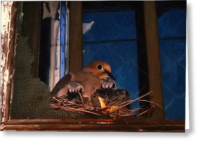 Bird Pictures Greeting Cards - Mourning Dove With Chicks Greeting Card by Chris Flees
