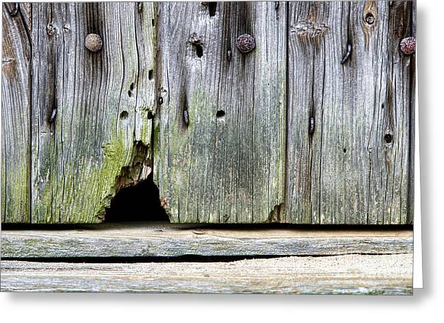 Entrance Door Greeting Cards - Mouse Hole Greeting Card by Olivier Le Queinec