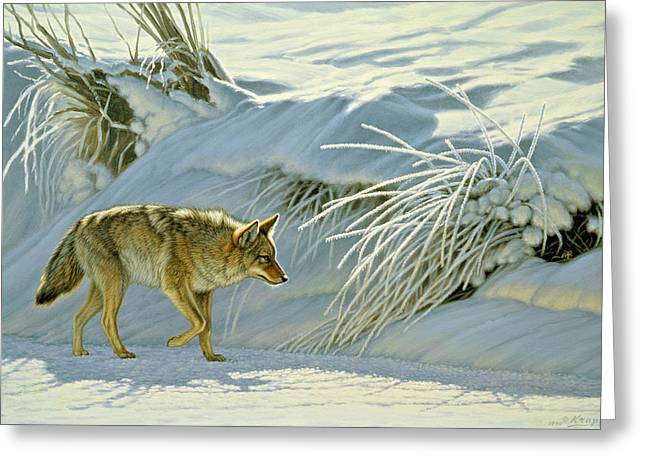 Coyote Greeting Cards - Mousing Greeting Card by Paul Krapf