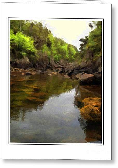 Green Barbara Griffin Art Greeting Cards - Mouth of the Brook - Calm - Shallow Water Greeting Card by Barbara Griffin