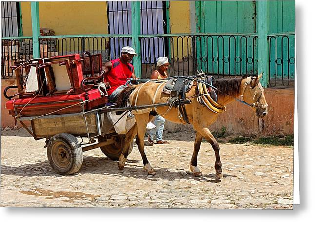 Horse And Cart Greeting Cards - Moving Day in Trinidad Greeting Card by Dawn Currie