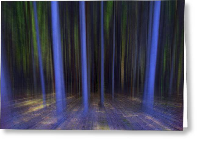 Florin Birjoveanu Greeting Cards - Moving Forest Greeting Card by Florin Birjoveanu