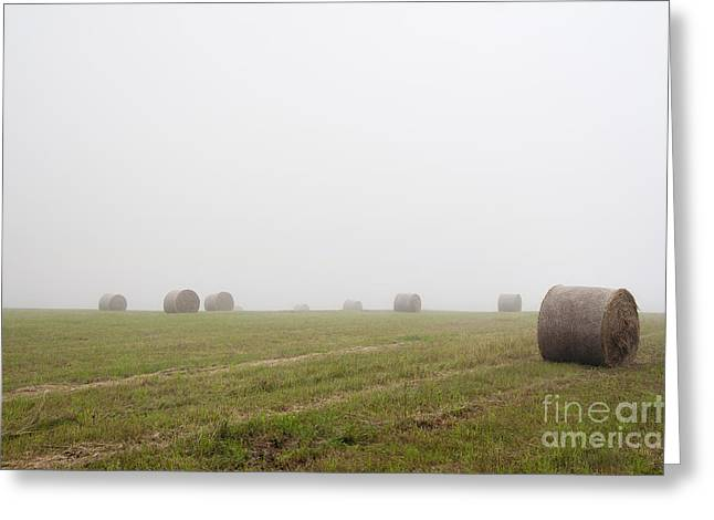 Haying Greeting Cards - Mowed Meadow In The Mist Greeting Card by Michal Boubin