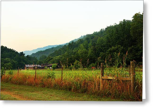 Arkansas Greeting Cards - MP0044 Steele Creek Horse Camp Greeting Card by Matthew Parks
