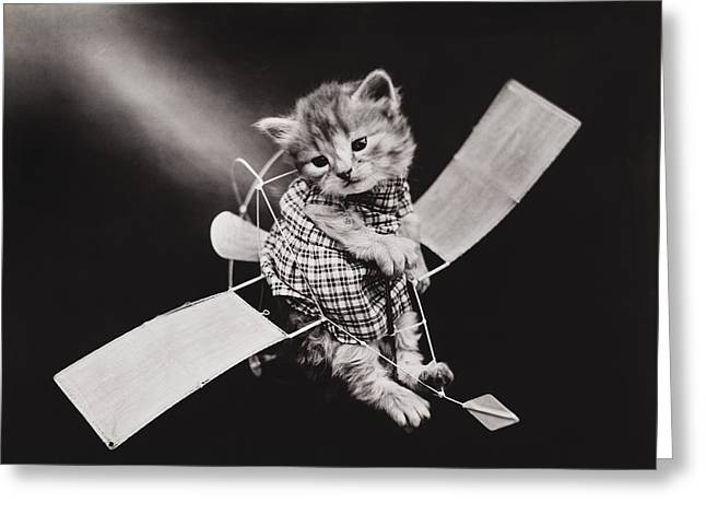 Glider Greeting Cards - Mr Aviator Greeting Card by Aged Pixel