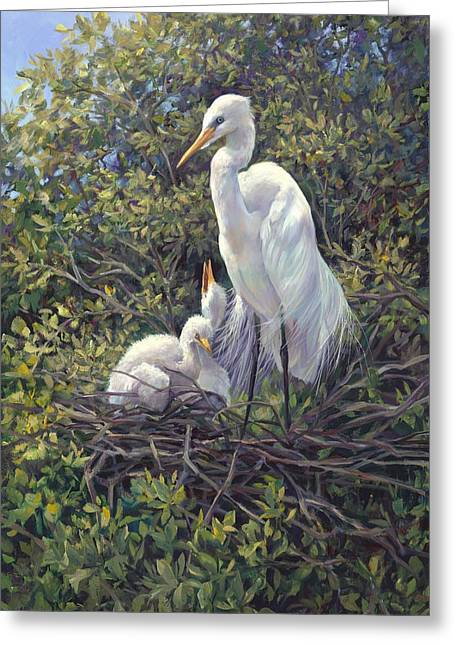 Cranes In Florida Greeting Cards - Mr Mom Greeting Card by Laurie Hein
