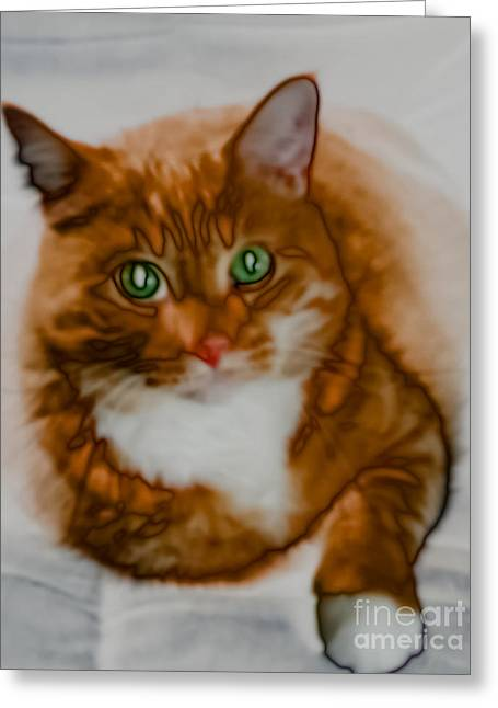 Confident Cat Greeting Cards - Mr. Orange Greeting Card by Kathi Shotwell