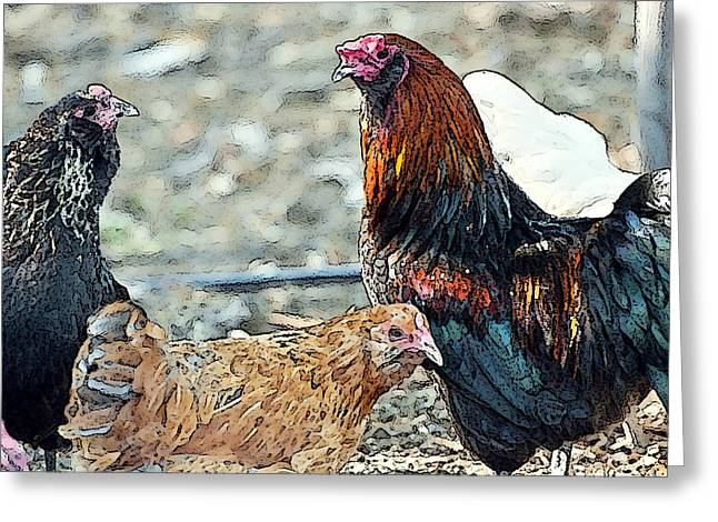 Mr. Rooster Talking With the Chickens Greeting Card by Artist and Photographer Laura Wrede