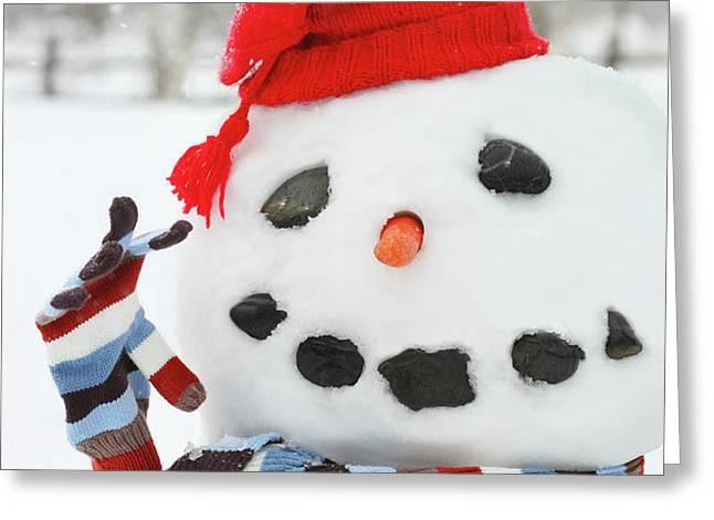 Mr. Snowman Greeting Card by Sandra Cunningham