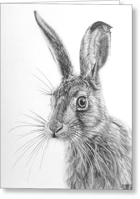 March Hare Greeting Cards - Mr Whisker Greeting Card by Frances Vincent