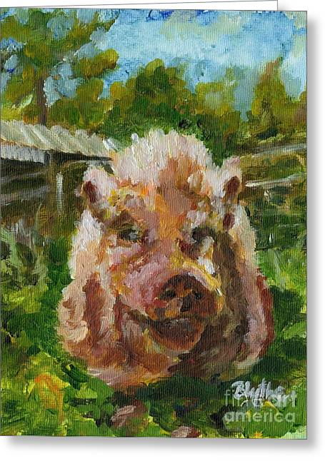 Potbelly Pig Greeting Cards - Mr. Wrigs Greeting Card by Blythe Quinn