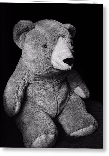 Black Teddy Greeting Cards - Mr.bear ...stuffed animal Greeting Card by Tom Druin