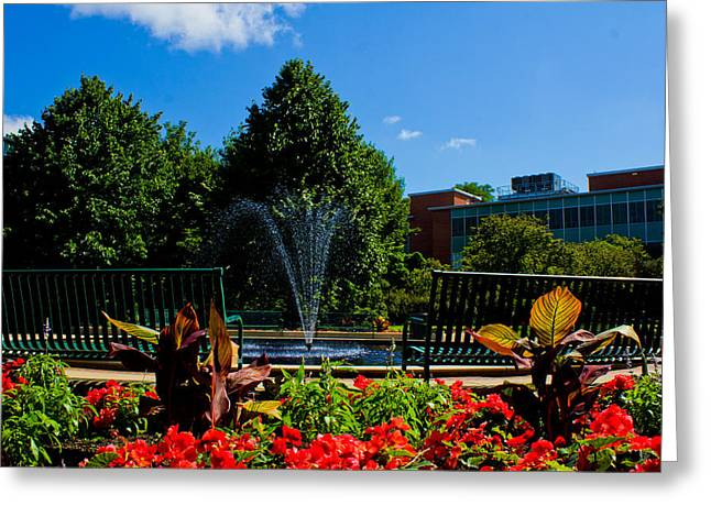 Msu Water Fountain Greeting Card by John McGraw