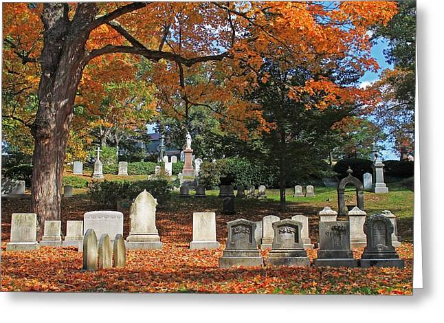 Auburn Ma Greeting Cards - Mt Auburn Cemetery 12 Greeting Card by Michael Saunders