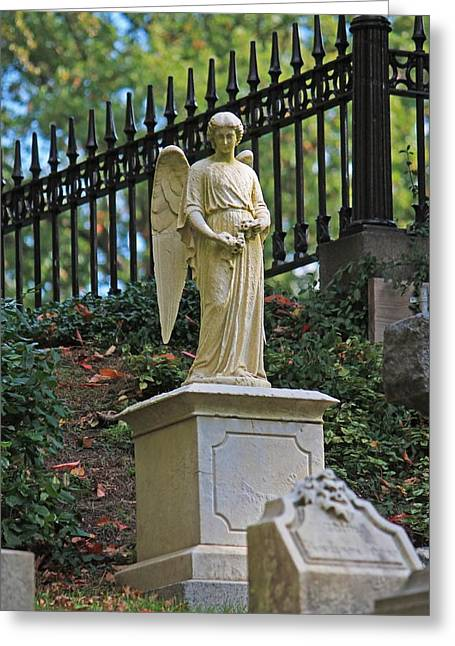 Auburn Ma Greeting Cards - Mt Auburn Cemetery 3 Greeting Card by Michael Saunders
