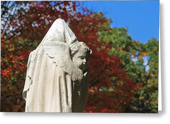 Auburn Ma Greeting Cards - Mt Auburn Cemetery 8 Greeting Card by Michael Saunders