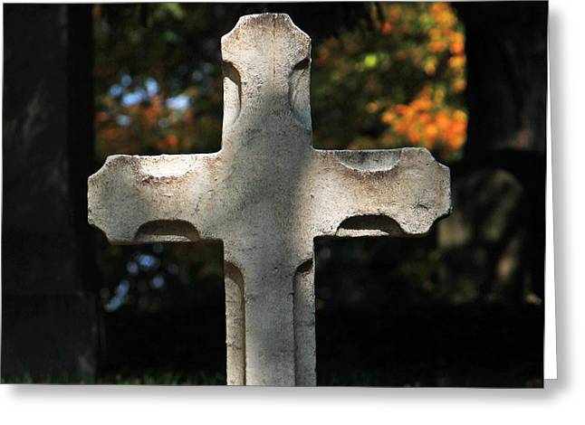 Auburn Ma Greeting Cards - Mt Auburn Cemetery 9 Greeting Card by Michael Saunders