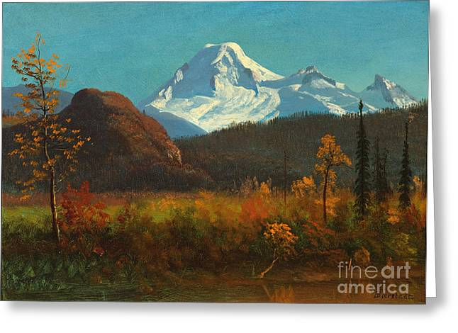 Steer Greeting Cards - Mt Baker from the Fraser River  Greeting Card by Albert Bierstadt
