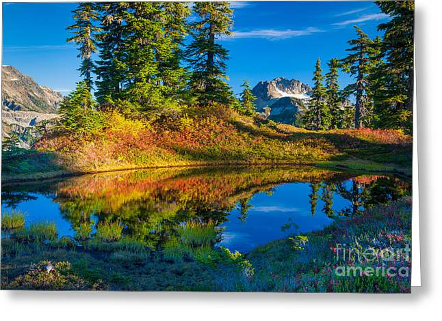 Deciduous Greeting Cards - Mt Baker Tarn in Fall Greeting Card by Inge Johnsson