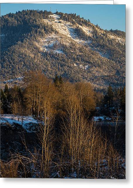 Mick Anderson Greeting Cards - Mt Baldy near Grants Pass Greeting Card by Mick Anderson