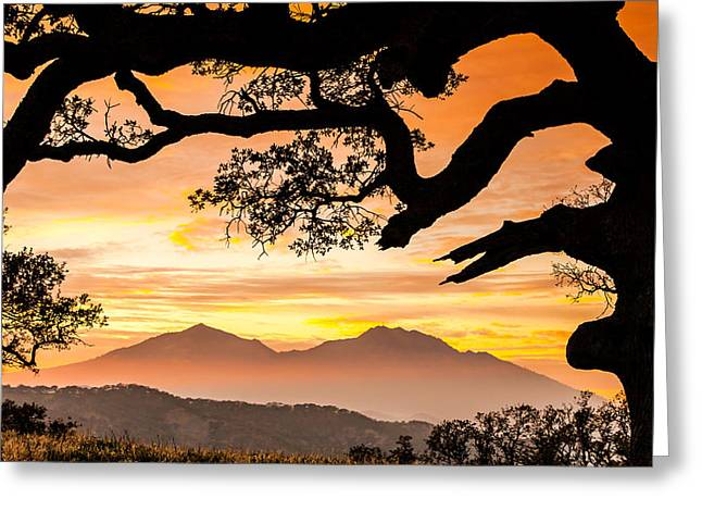 Costa Greeting Cards - Mt Diablo Framed By An Oak Tree Greeting Card by Marc Crumpler