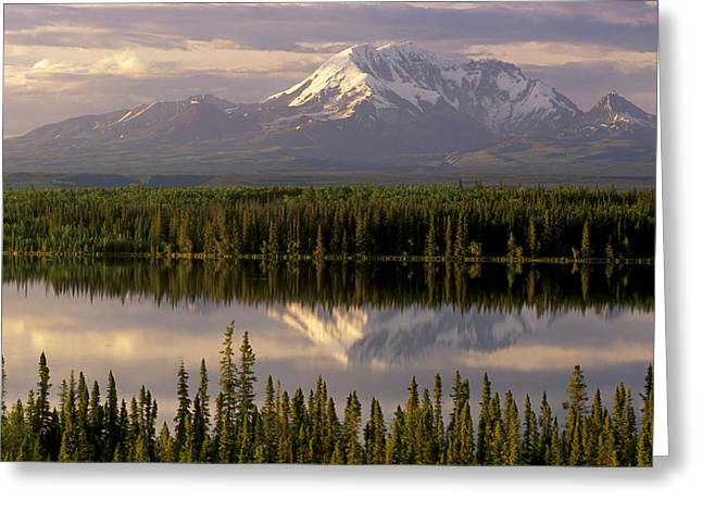 Willow Lake Greeting Cards - Mt Drum Over Willow Lake Wrangell-st Greeting Card by Calvin Hall