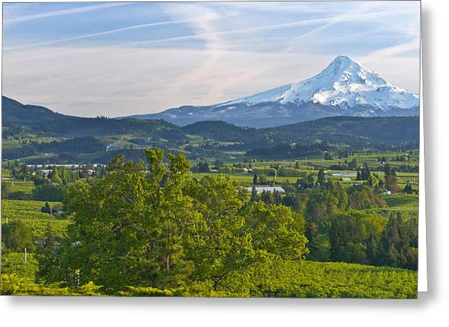 Mt Hood Greeting Cards - Mt Hood And Hood River Valley Greeting Card by Panoramic Images