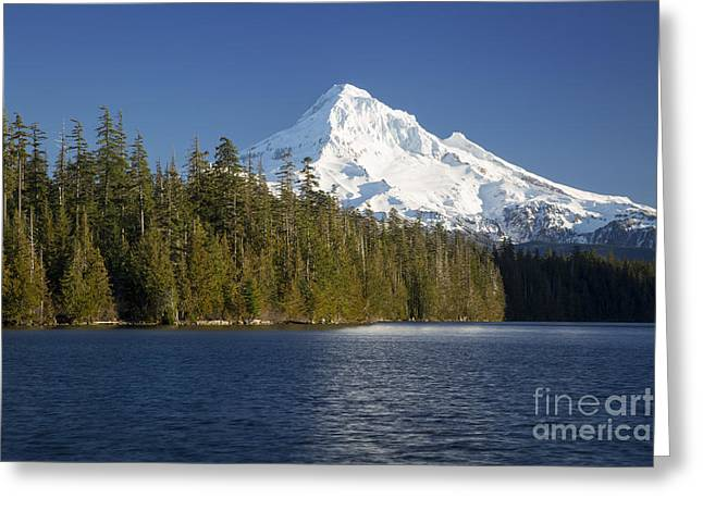 Fir Trees Greeting Cards - Mt Hood and Lost Lake Greeting Card by Brian Jannsen