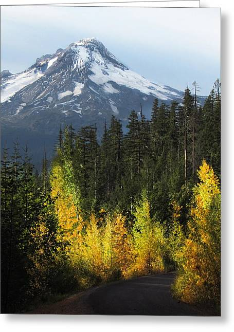 Fir Trees Greeting Cards - Mt Hood Greeting Card by Angie Vogel