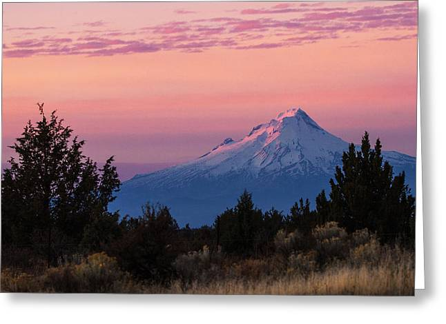 Sage Brush Greeting Cards - Mt Hood at Sunset Greeting Card by Angie Vogel