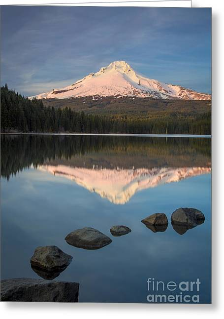 Fir Trees Greeting Cards - Mt Hood Evening Greeting Card by Brian Jannsen