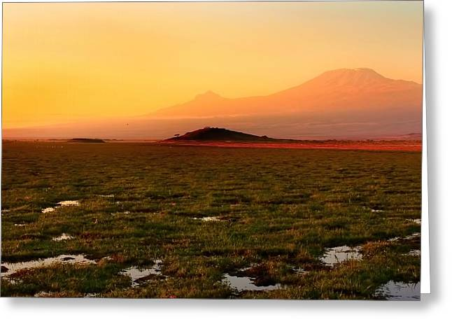 Mt Kilimanjaro Greeting Card by Amanda Stadther