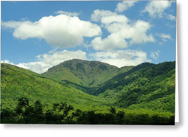 Tn Greeting Cards - Mt LeConte Smoky Mountains Greeting Card by Cynthia Woods