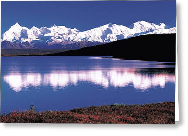 Snow Capped Greeting Cards - Mt. Mckinley & Wonder Lake Denali Greeting Card by Panoramic Images