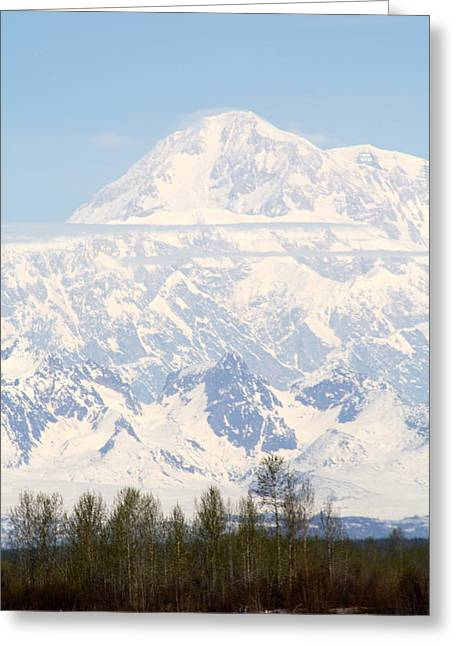 Mt Pyrography Greeting Cards - Mt. McKinley 2 Greeting Card by Mimi Uhlman