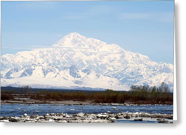 Mt Pyrography Greeting Cards - Mt. McKinley Greeting Card by Mimi Uhlman