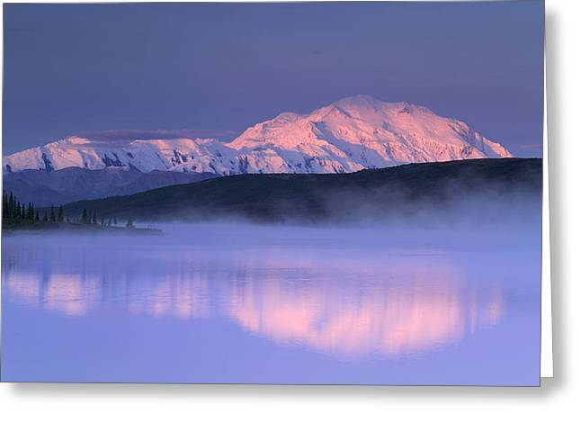 Beautiful Scenery Greeting Cards - Mt Mckinley Over Wonder Lake In Morning Greeting Card by Michael DeYoung