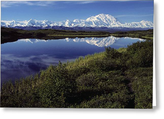 Northside Greeting Cards - Mt Mckinley Reflected In Tundra Pond Greeting Card by Jeff Schultz