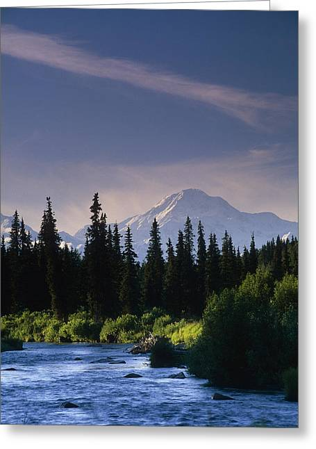 Beautiful Scenery Greeting Cards - Mt Mckinley W River Summer Scenic Greeting Card by Wayne Johnson
