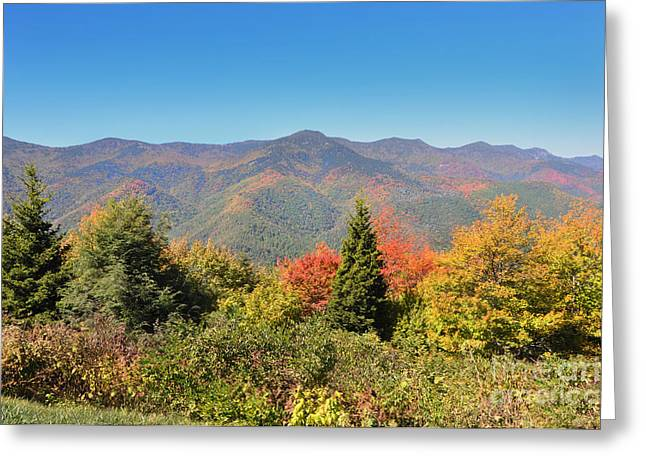 Dogwood Silhouette Greeting Cards - Mt Mitchell in Autumn Greeting Card by Stuart Mcdaniel
