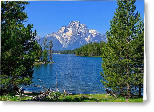 Half Moon Bay Greeting Cards - Mt Moran at Half Moon Bay Greeting Card by Greg Norrell