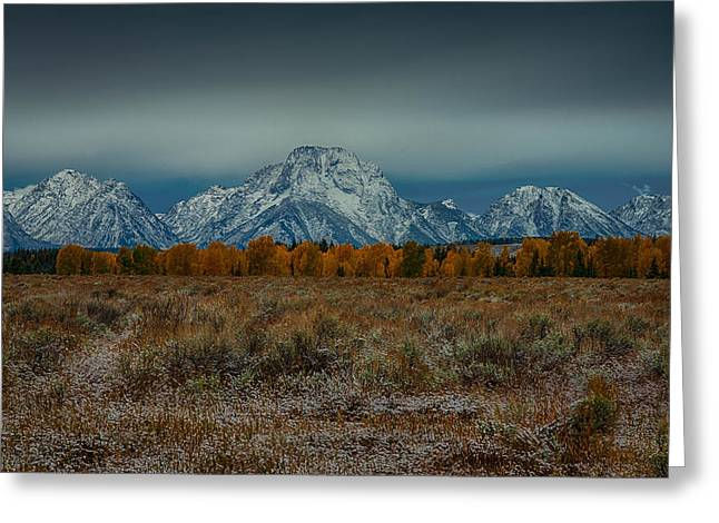 Moran Pyrography Greeting Cards - Mt Moran Greeting Card by Renn Lawrence