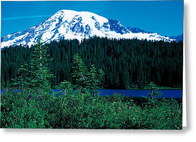 Snow Capped Greeting Cards - Mt Rainier Mt Rainier National Park Wa Greeting Card by Panoramic Images